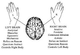 Sperry (1968): Split-brain Study - YouTube